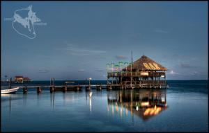 Palapa Professional Picture