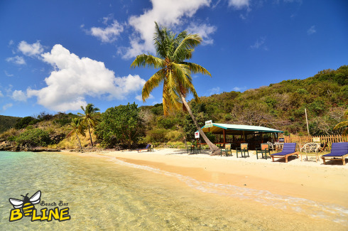 B-Line Beach Bar - Photo 12