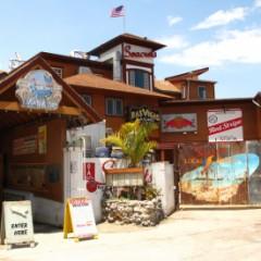 Scenes From Seacrets Beach Bar, Ocean City, Maryland