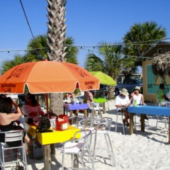 Scenes From Paradise Bar, Pensacola Beach, Florida