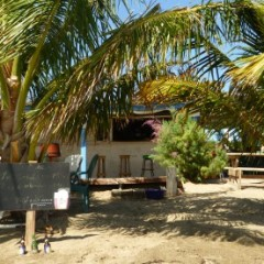 Beach Bar Bums Discover Discovery Beach Bar In St. Kitts
