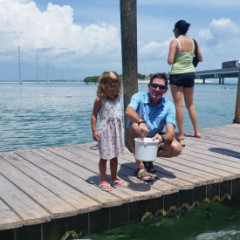 Feeding the Tarpon at Robbie's – The Best Dollar You'll Spend in the Florida Keys