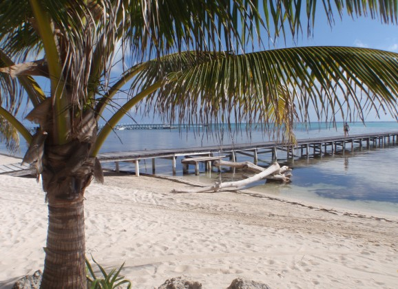 Update on Belize Beach Bar for Sale – Kama Lounge and Bistro Bar