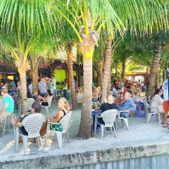Best Beach Bars in the Palm Beach Area for Spring Break