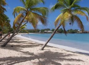 """Caribbean Journal Features """"Secret"""" Martinique Beach Bar"""