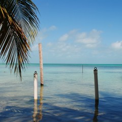 Finding Your Way to Wayo's Beach Bar on Ambergris Caye, Belize
