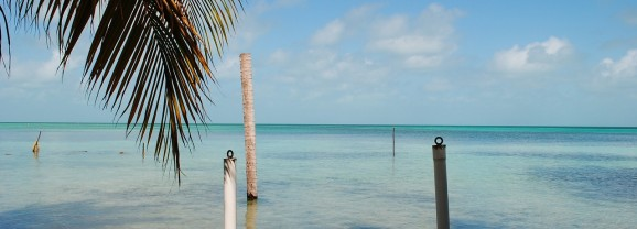 Four Minutes at Ambergris Caye's Palapa Bar and Grill in Belize