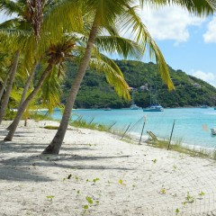 Update On New Jost Van Dyke Beach Bar