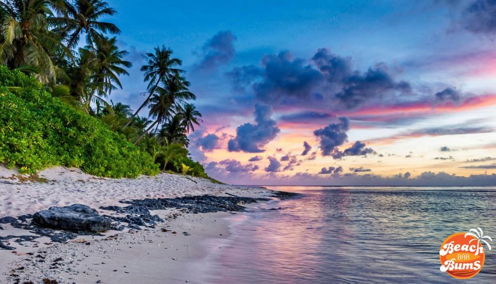 sky, ocean, palm trees