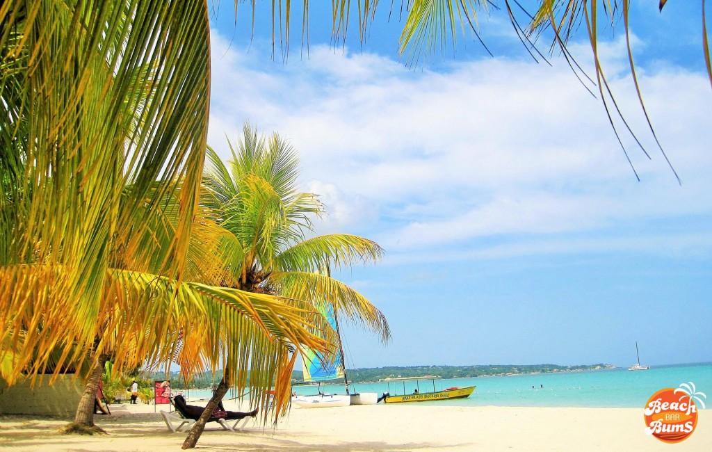 beach wallpaper, caribbean, palm trees