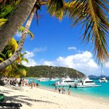 Beach Bar Bums Focus – Todd Hayward, Flip Flops and Palms