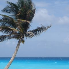 Beach Thursday Pic of the Week – Cancun Love Affair