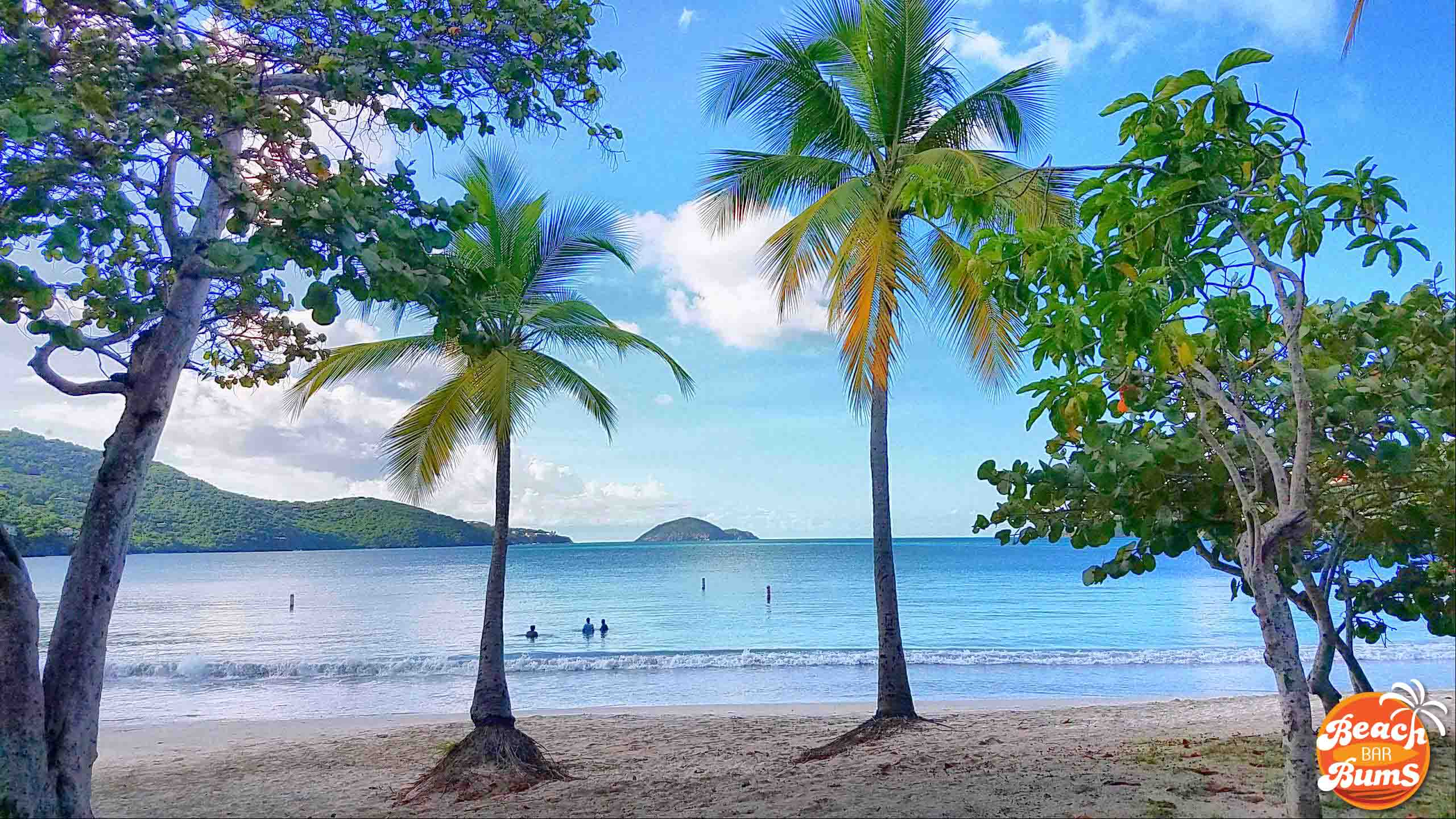 beach, beach wallpaper, caribbean, palm trees
