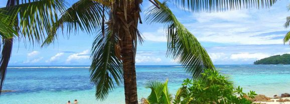 Sixty Seconds at Fish Trap Restaurant and Bar in Seychelles