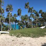 sandy toes, beach bar, rose island, bahamas