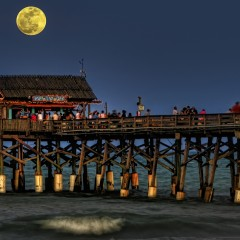 Beach Bar or Pier Bar?