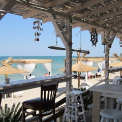 """What Makes A """"Beach Bar"""" A True Beach Bar"""
