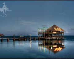 Beach Bar Bums Focus – Scott and Jodie Harnish, Palapa Bar and Grill, Ambergris Caye, Belize