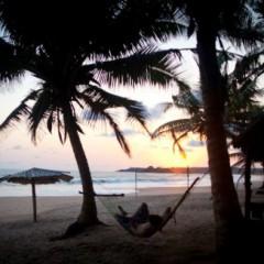 Beach Bars For Sale – Beach Bar at Green Turtle Lodge, Ghana
