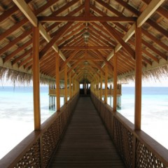 Photo of the Day – Moodhu Bar, Reethi Beach Resort, Maldives