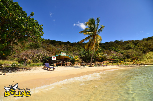 B-Line Beach Bar - Photo 11