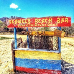 Does St. Kitts Have The World's Smallest Beach Bar?