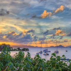 Beach Bars For Sale – Barefoot Cowboy Lounge, St. John, USVI