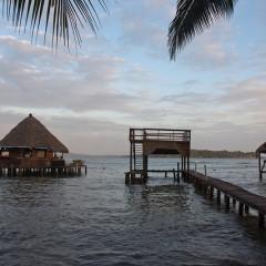 Panama Beach Bars: The Pickeled Parrot, Isla Caranero, Bocas del Toro