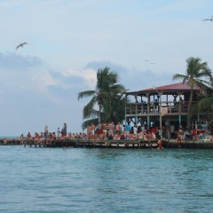 Caye Caulker's Lazy Lizard Beach Bar Closes Down?