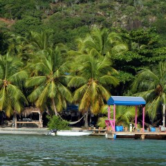 Four British Virgin Islands Beach Bars for the Seafarer in Your Life