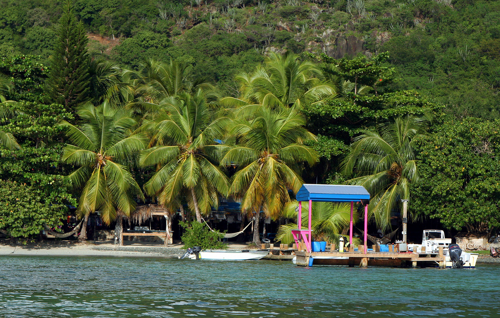 "Pulling up to Foxy's Beach Bar on Jost Van Dyke. Credit flickr user ""anoldent"""