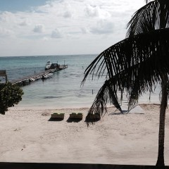Update on Belize Beach Bar for Sale