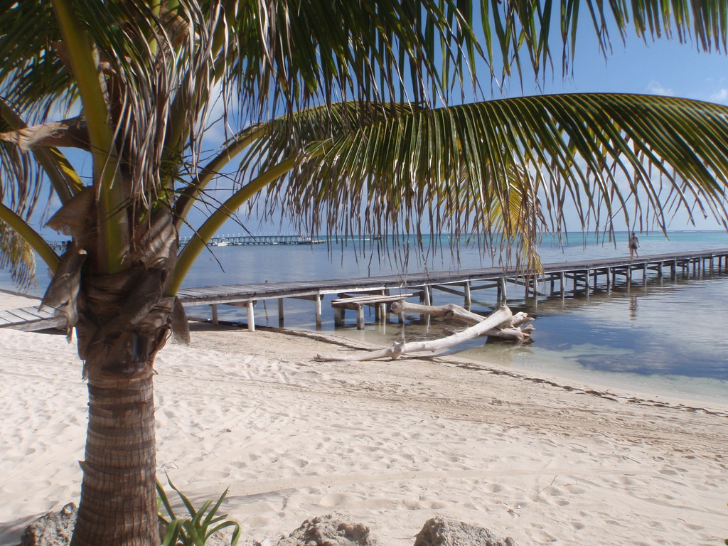 View from north end of Ambergris Caye, Belize. Credit Heath Alseike.