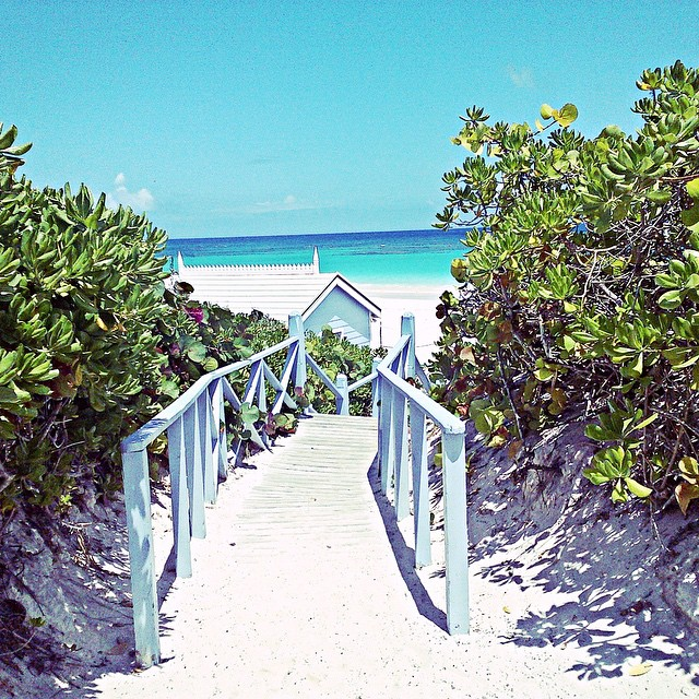 Path to blue water at Pink Sands Resort on Harbour Island, Bahamas. Photo by @nickybeachusa