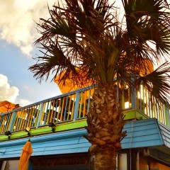 Finding Florida Travel Tips With Beaches, Bars and Bungalows