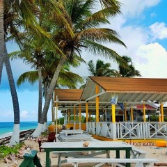Escape to Cow Wreck Beach Bar on Anegada