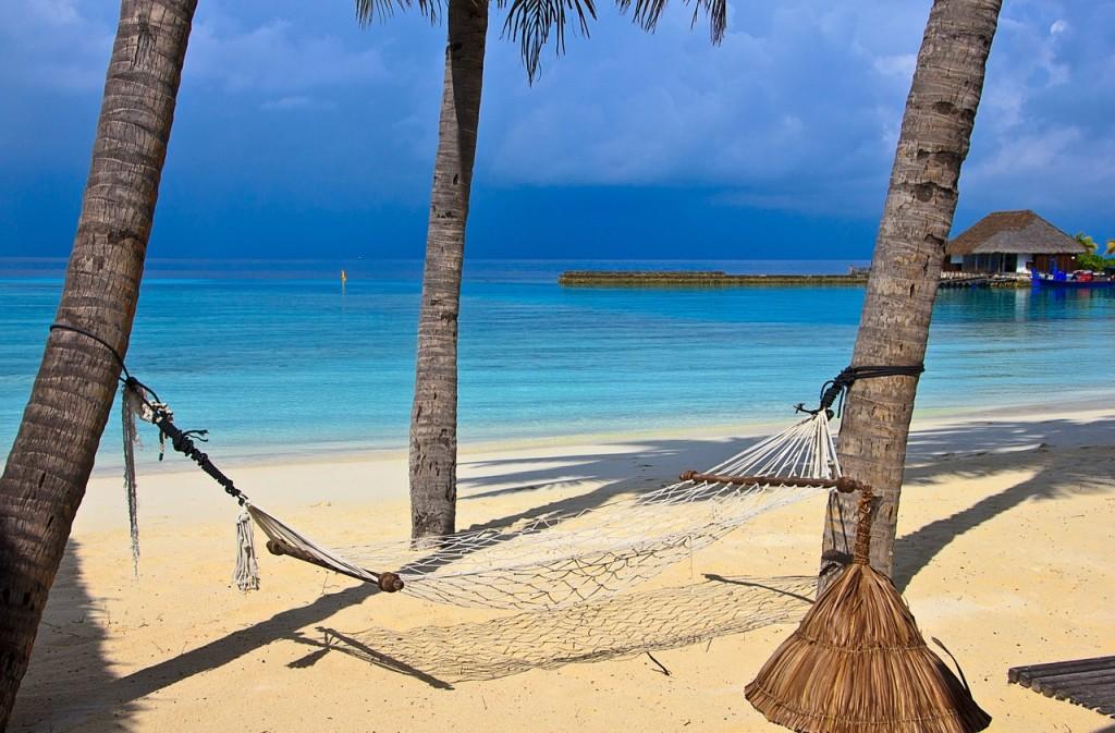 beach, ocean palm trees, hammock