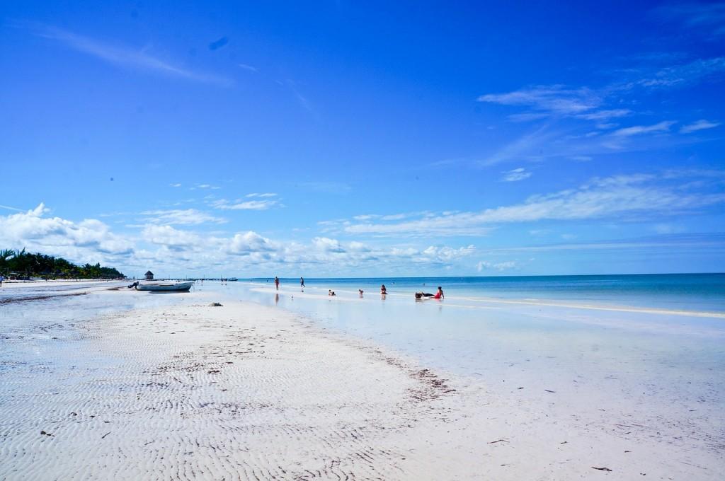 beach, ocean