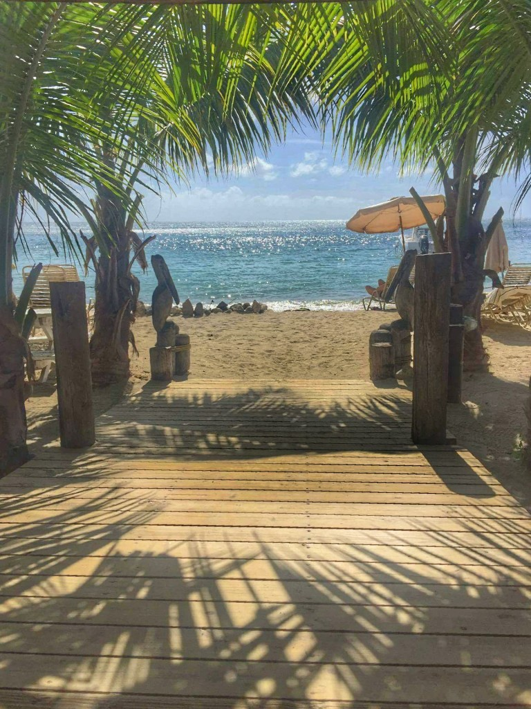 View from Reggae Beach Bar, St. Kitts