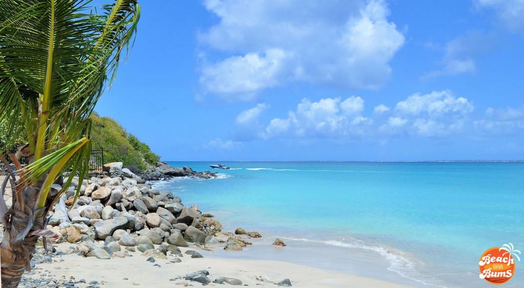 caribbean, palm trees, beach wallpaper
