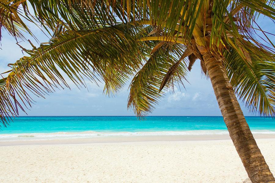ocean, caribbean