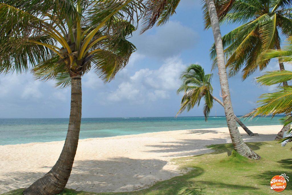 beach wallpaper, caribbean wallpaper