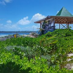 Livin in the Sun Music Festival Set to Debut in Anguilla