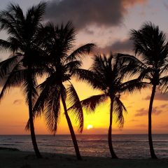 Beach Thursday Pic of the Week – Anse Bertrand, Guadeloupe
