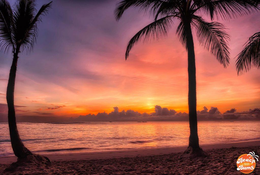 beach, wallpaper, caribbean, palm trees