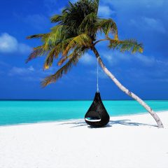 Beach Thursday Pic of the Week – Swinging Away in the Maldives