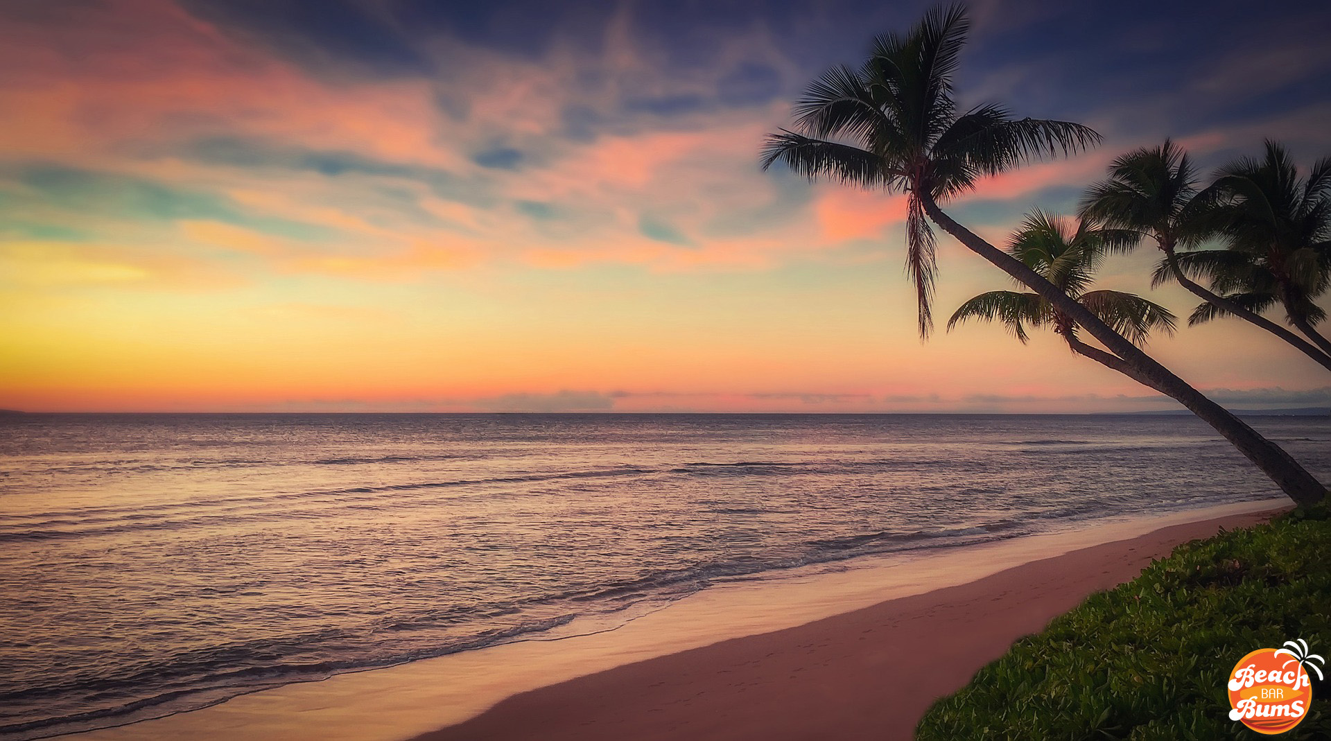 beach wallpaper, sunset, sunrise, palm tree