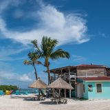 Friday Flickr Find – The Lazy Lizard, Caye Caulker, Belize