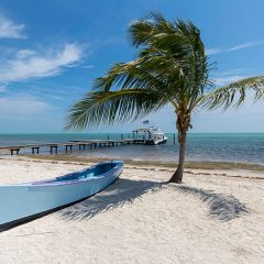 Bloodline, The Dock and The Moorings – Reel Life in the Florida Keys