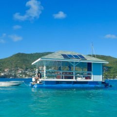 Beach Bar on the Water? In Search of Bequia's Bar One